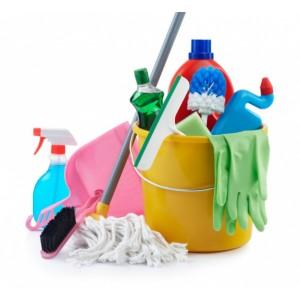 Инструменты для уборки (3)